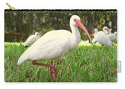 American White Ibis Birds In Orlando, Florida Carry-all Pouch
