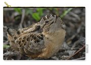 American Woodcock At Rest Carry-all Pouch