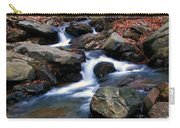 Amicalola Stream Carry-all Pouch