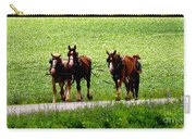 Amish Horse Team Carry-all Pouch