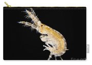 Amphipod Crustacean, Lm Carry-all Pouch