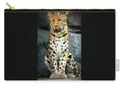 Amur Lepard I Hear Something Carry-all Pouch