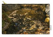 An Abstract Fall Reflection Carry-all Pouch