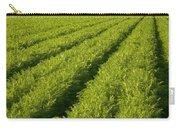 An Organic Carrot Field Carry-all Pouch