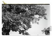 Ancient Oak, Bradgate Park Carry-all Pouch