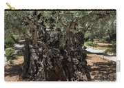 Ancient Olive Tree Carry-all Pouch