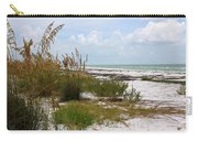 Anclote Key Preserve Carry-all Pouch