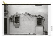 Andalucia Wall Carry-all Pouch