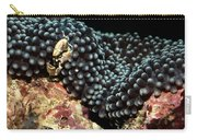 Anemone Crab Carry-all Pouch