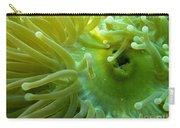 Anemone Shrimp2 Carry-all Pouch