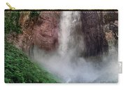 Angel Falls Canaima National Park Venezuela Carry-all Pouch by Dave Welling