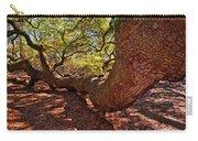 Angel Oak Tree 003 Carry-all Pouch