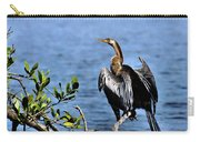Anhinga 1 Carry-all Pouch