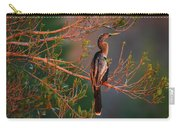 Anhinga Sunset Carry-all Pouch