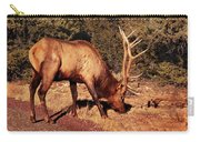 Animal - Elk -  An Elk Eating Carry-all Pouch