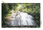 Anna Ruby Falls Carry-all Pouch
