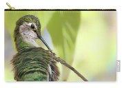 Anna's Hummingbird - Preening Carry-all Pouch