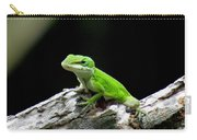 Anole 15 Carry-all Pouch