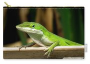 Anole 16 Carry-all Pouch