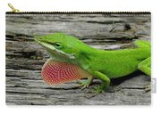 Anole 17 Carry-all Pouch