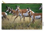 Antelope 1 Carry-all Pouch