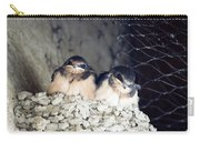 Antelope Island Birds Carry-all Pouch