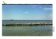 Apollo Beach Florida Carry-all Pouch