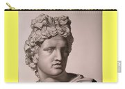 Apollo Bust Drawing Carry-all Pouch