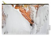 Apostle Islands Frozen Canyon Carry-all Pouch