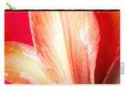 Apple Amaryllis Red Apple Amaryllis On A Pink And Yellow Background Carry-all Pouch