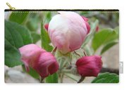 Apple Blossom Buds Art Prints Spring Baslee Troutman Carry-all Pouch