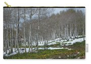 Approaching Spring In The Aspen Forest Carry-all Pouch by Cascade Colors