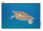 Aqua Glider Carry-all Pouch