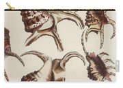 Aquatic Animals - Conch - Shells - Snails Carry-all Pouch