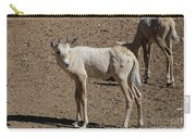 Arabian Oryx Baby Carry-all Pouch