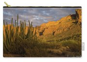 Arch Canyon 3 Carry-all Pouch