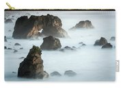 Arched Rock Sea Bird Carry-all Pouch