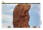 Arches Formation 27 Carry-all Pouch
