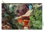 Arches National Park Trail Carry-all Pouch