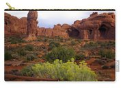 Arches Park 1 Carry-all Pouch