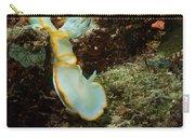 Ardreadoris Egretta Carry-all Pouch