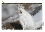 Are You Kidding? - Mountain Hare #14 Carry-all Pouch