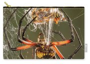 Argiope Spider Wrapping A Hornet Carry-all Pouch