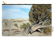 Arid Beauty Carry-all Pouch