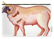 Aries The Ram Carry-all Pouch