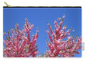 Arizona 3 Carry-all Pouch