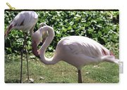 Arizona Flamingos Carry-all Pouch