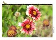 Arizona Sun Blanket Flowers Carry-all Pouch