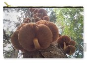 Armillaria Autumn On A Tree Trunk Carry-all Pouch