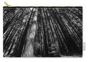 Armstrong National Park Redwoods Filtered Sun Black And White Carry-all Pouch
